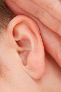 Das menschliche Ohr auf blog-baron.de